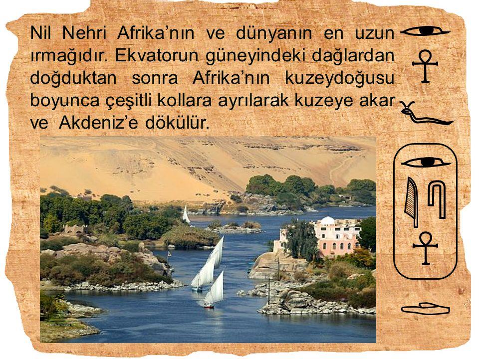 Nil Nehri Afrika'nın ve dünyanın en uzun ırmağıdır