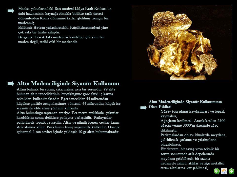 Altın Madenciliğinde Siyanür Kullanımı