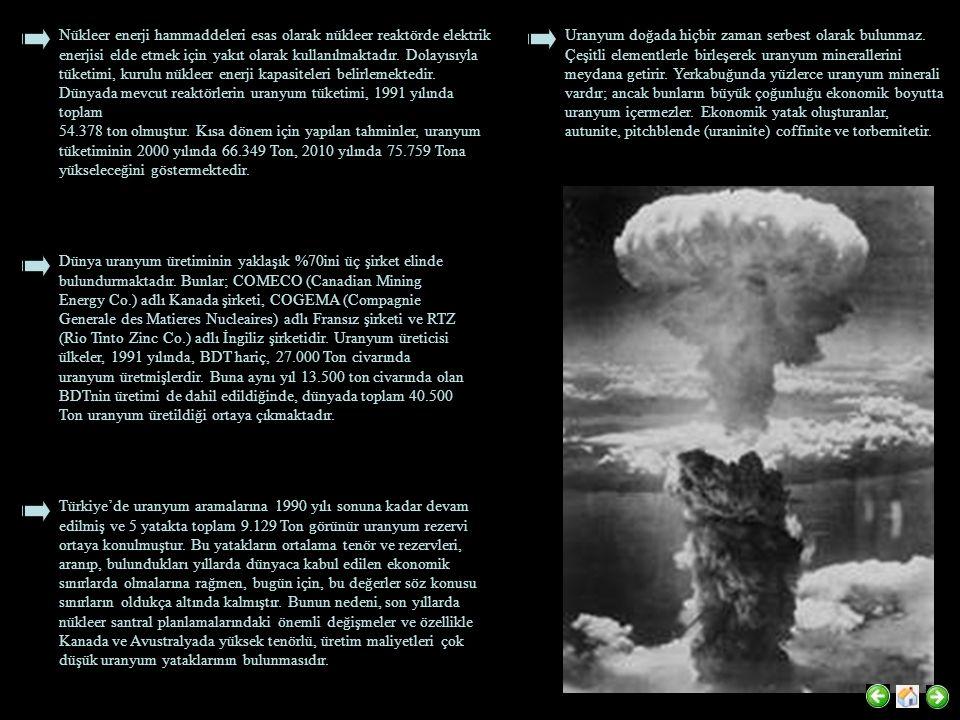 Nükleer enerji hammaddeleri esas olarak nükleer reaktörde elektrik enerjisi elde etmek için yakıt olarak kullanılmaktadır. Dolayısıyla tüketimi, kurulu nükleer enerji kapasiteleri belirlemektedir. Dünyada mevcut reaktörlerin uranyum tüketimi, 1991 yılında toplam
