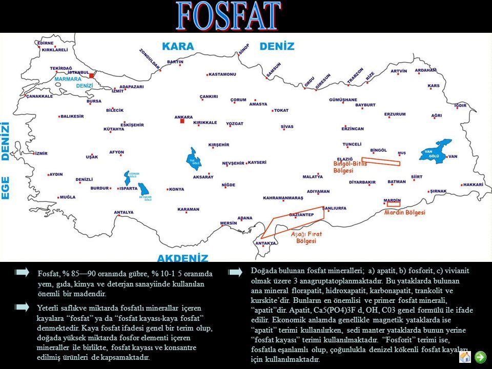 FOSFAT Fosfat, % 85—90 oranında gübre, % 10-1 5 oranında yem, gıda, kimya ve deterjan sanayiinde kullanılan önemli bir madendir.