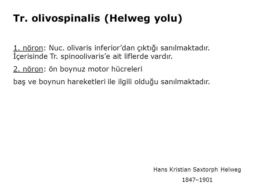 Hans Kristian Saxtorph Helweg