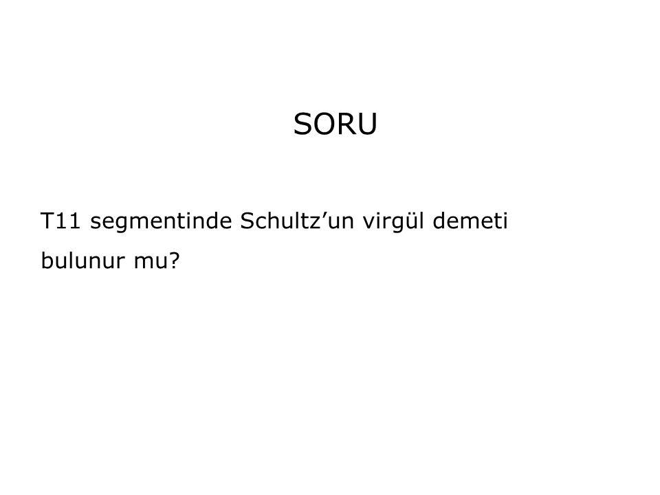SORU T11 segmentinde Schultz'un virgül demeti bulunur mu