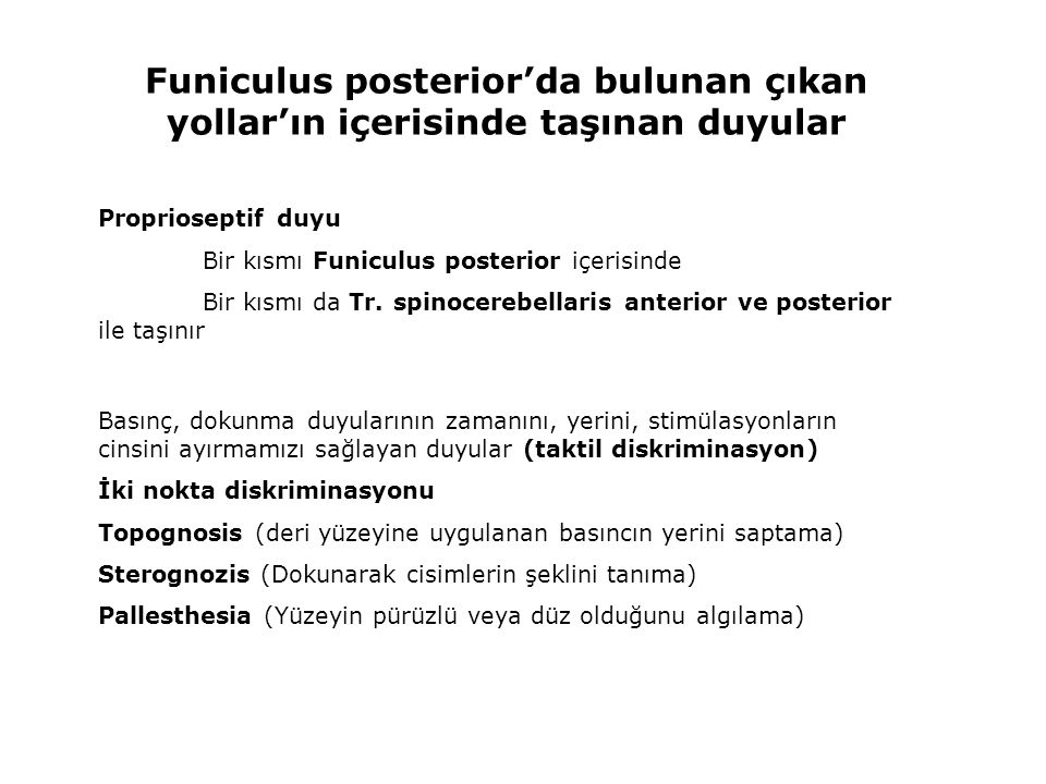 Funiculus posterior'da bulunan çıkan yollar'ın içerisinde taşınan duyular