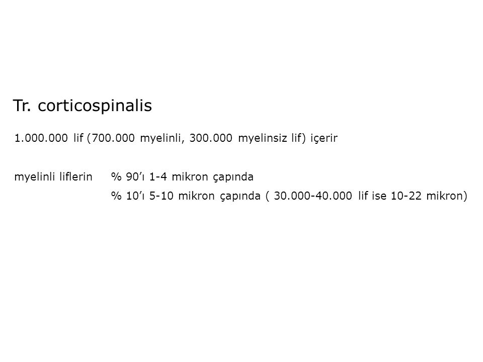 Tr. corticospinalis 1.000.000 lif (700.000 myelinli, 300.000 myelinsiz lif) içerir. myelinli liflerin % 90'ı 1-4 mikron çapında.