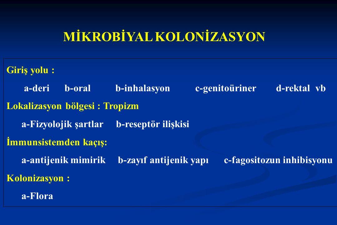 MİKROBİYAL KOLONİZASYON