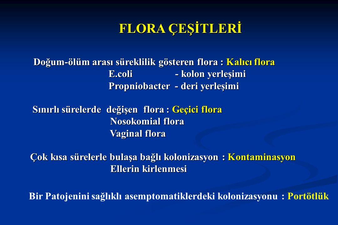FLORA ÇEŞİTLERİ Doğum-ölüm arası süreklilik gösteren flora : Kalıcı flora. E.coli - kolon yerleşimi.