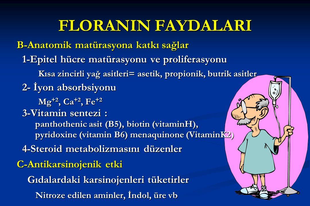 FLORANIN FAYDALARI B-Anatomik matürasyona katkı sağlar