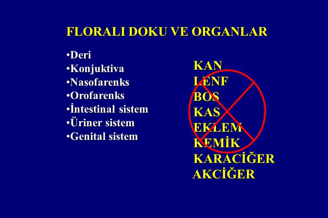 FLORALI DOKU VE ORGANLAR