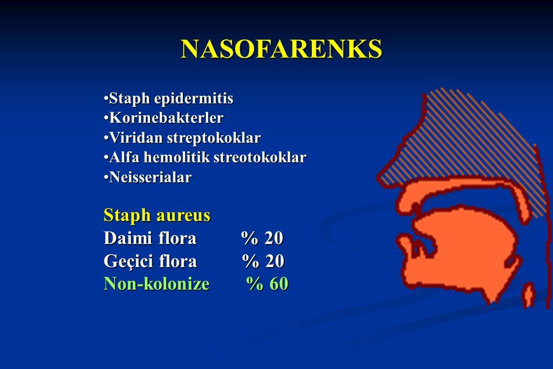NASOFARENKS Staph aureus Daimi flora % 20 Geçici flora % 20