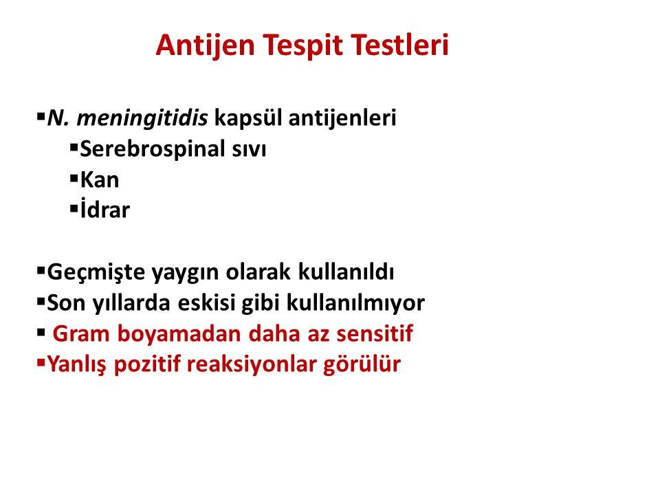 Antijen Tespit Testleri