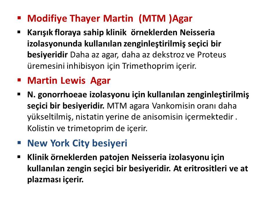 Modifiye Thayer Martin (MTM )Agar