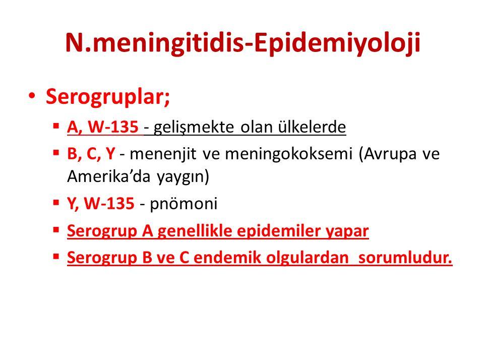 N.meningitidis-Epidemiyoloji