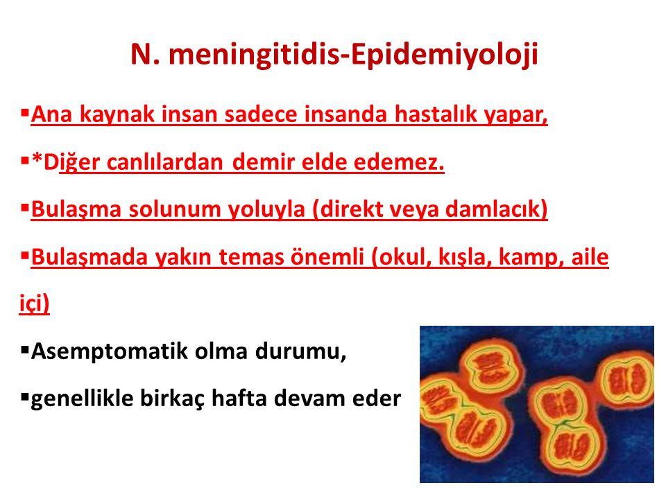 N. meningitidis-Epidemiyoloji