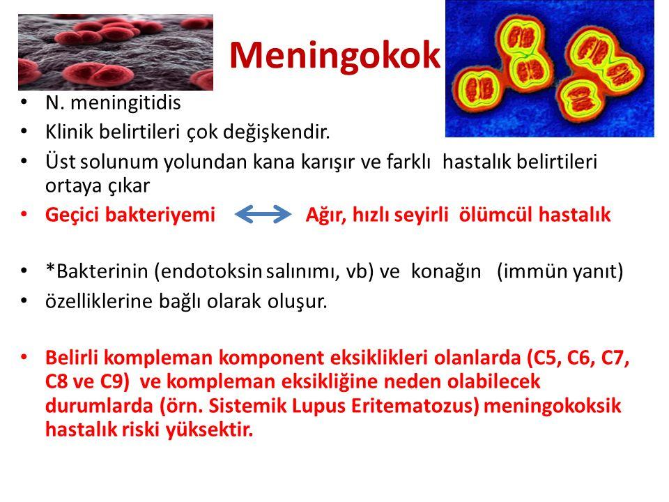 Meningokok N. meningitidis Klinik belirtileri çok değişkendir.