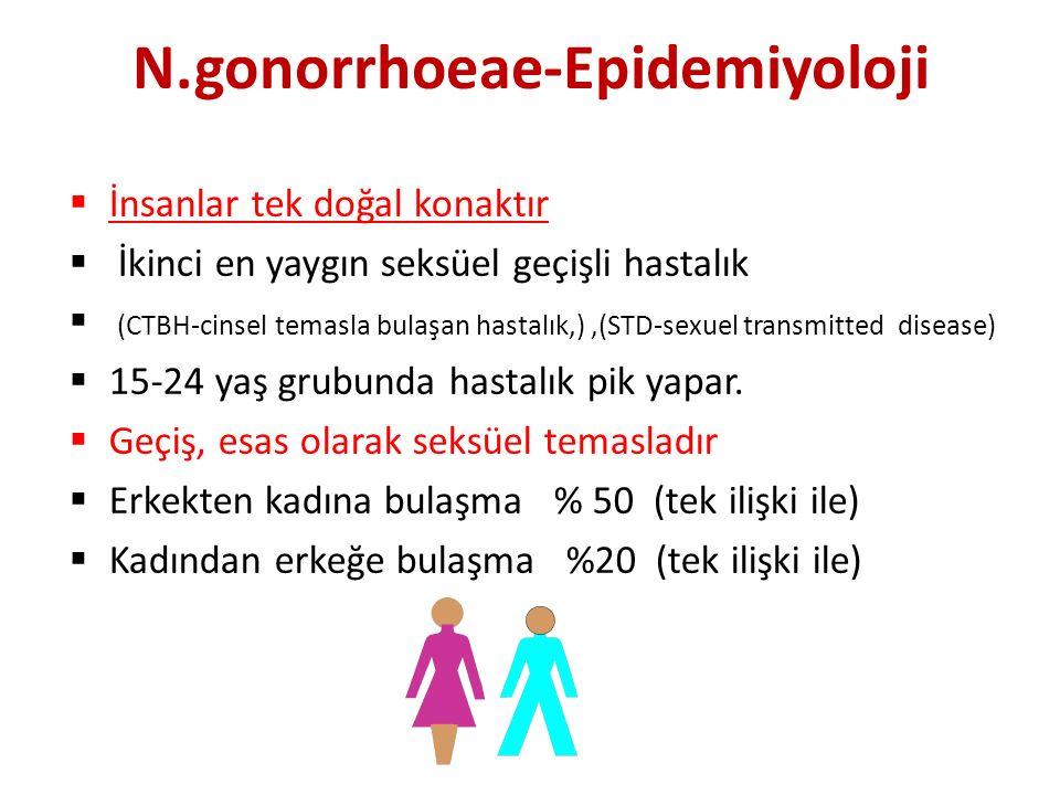 N.gonorrhoeae-Epidemiyoloji