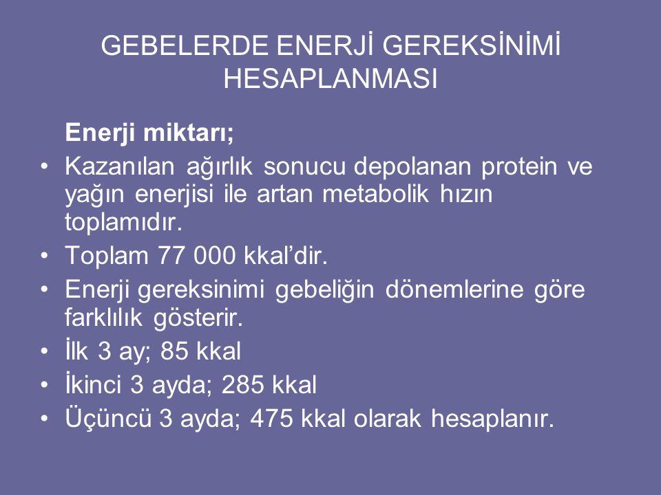 GEBELERDE ENERJİ GEREKSİNİMİ HESAPLANMASI
