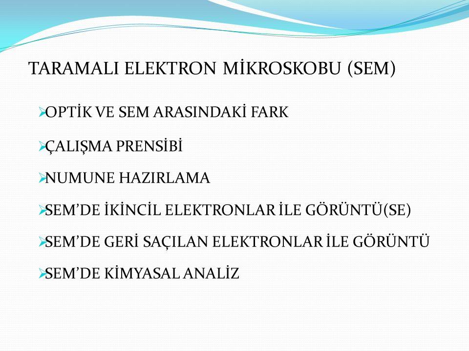 TARAMALI ELEKTRON MİKROSKOBU (SEM)