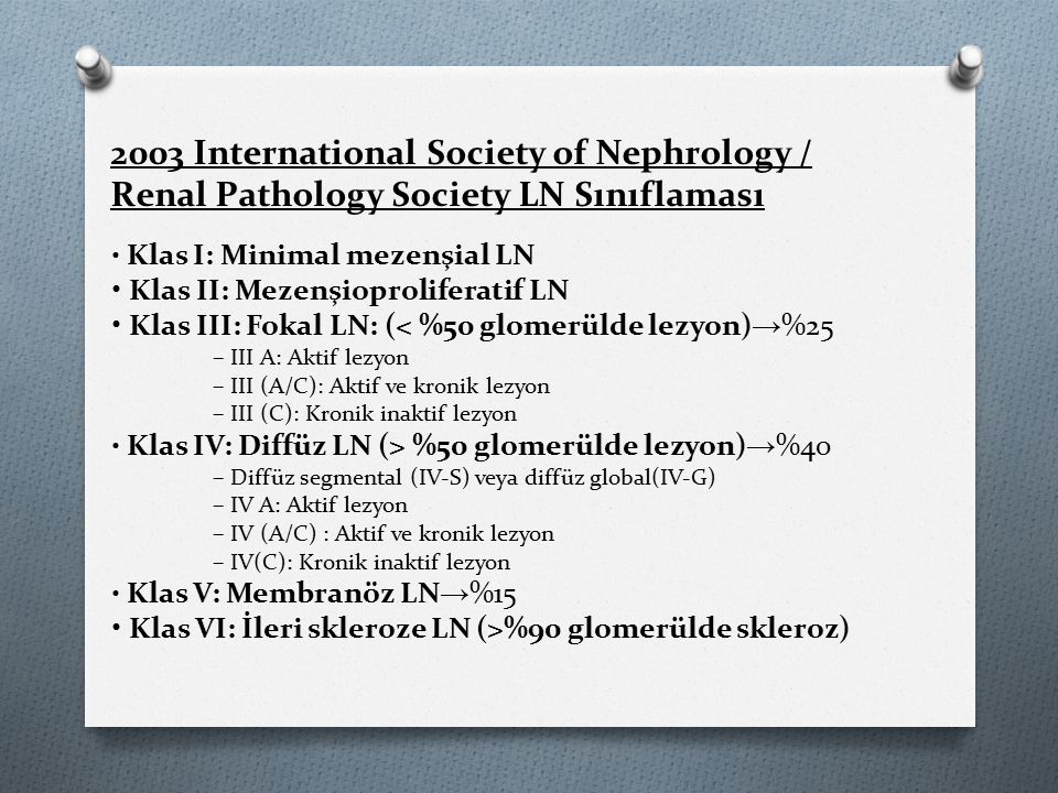 2003 International Society of Nephrology /