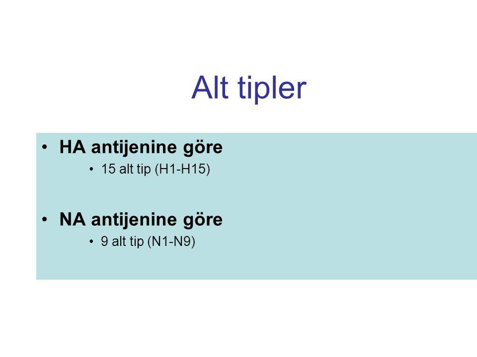 Alt tipler HA antijenine göre NA antijenine göre 15 alt tip (H1-H15)