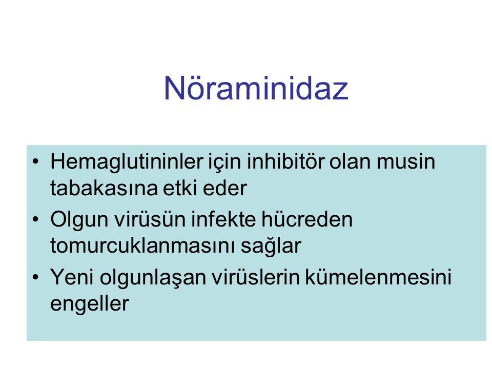Nöraminidaz Hemaglutininler için inhibitör olan musin tabakasına etki eder. Olgun virüsün infekte hücreden tomurcuklanmasını sağlar.