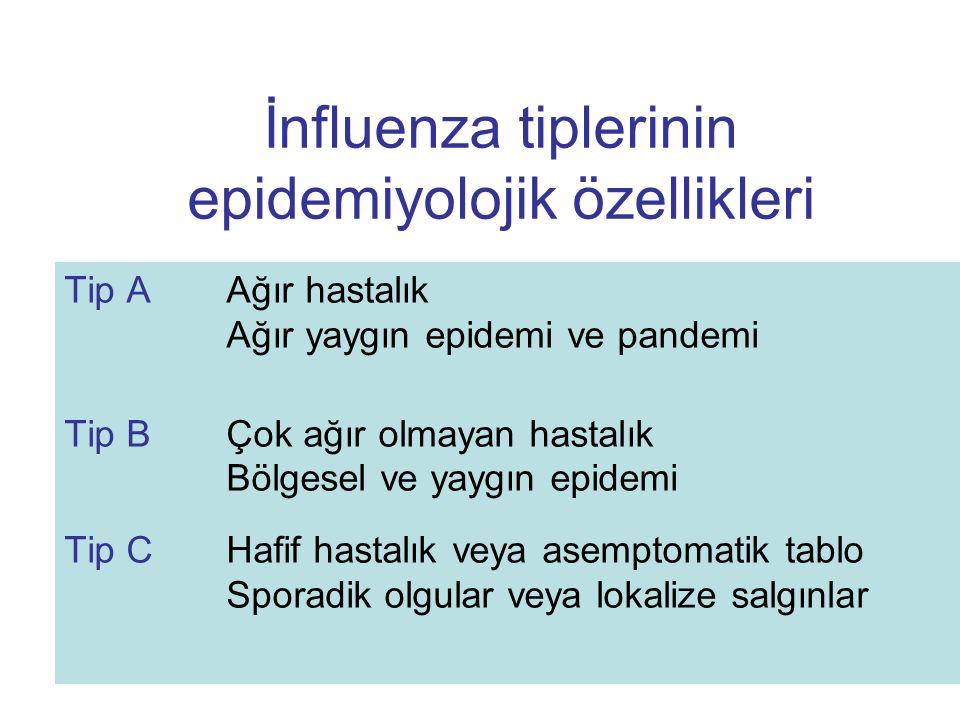 İnfluenza tiplerinin epidemiyolojik özellikleri