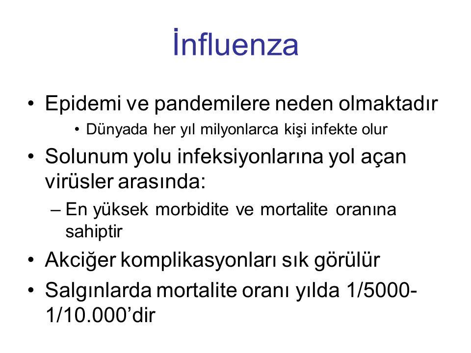 İnfluenza Epidemi ve pandemilere neden olmaktadır