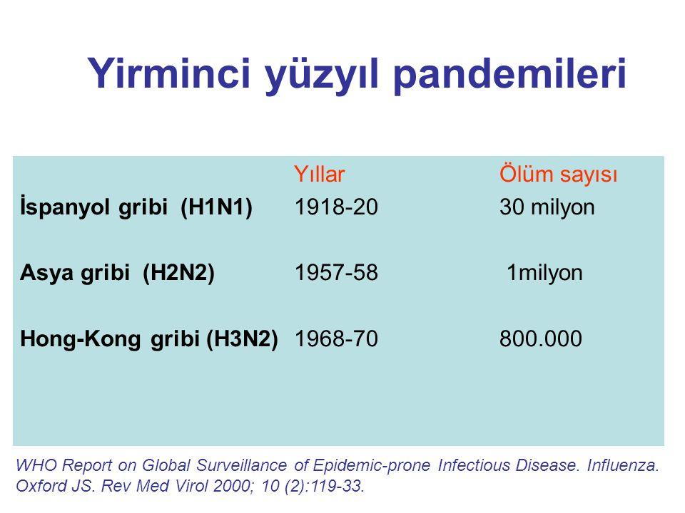 Yirminci yüzyıl pandemileri