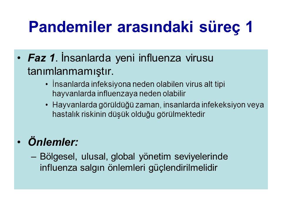 Pandemiler arasındaki süreç 1