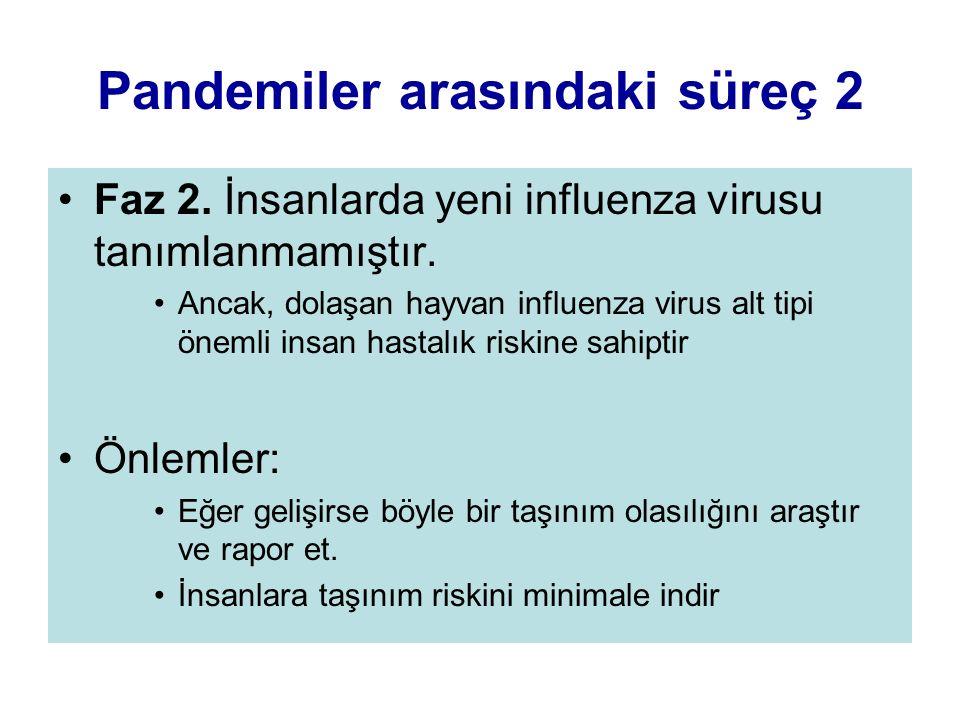 Pandemiler arasındaki süreç 2