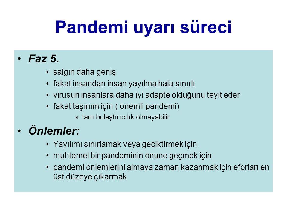 Pandemi uyarı süreci Faz 5. Önlemler: salgın daha geniş