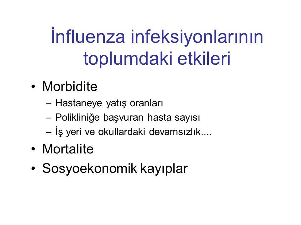 İnfluenza infeksiyonlarının toplumdaki etkileri