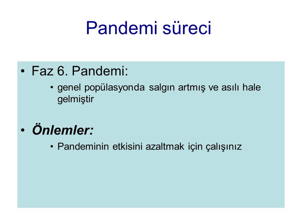 Pandemi süreci Faz 6. Pandemi: Önlemler:
