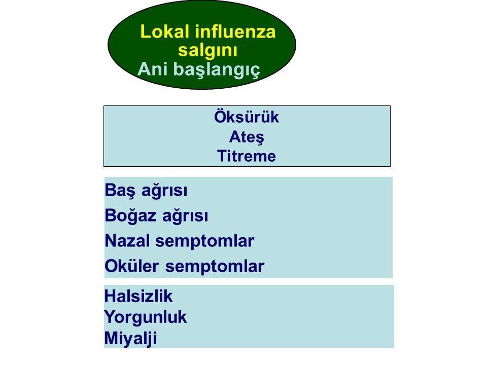 Lokal influenza salgını