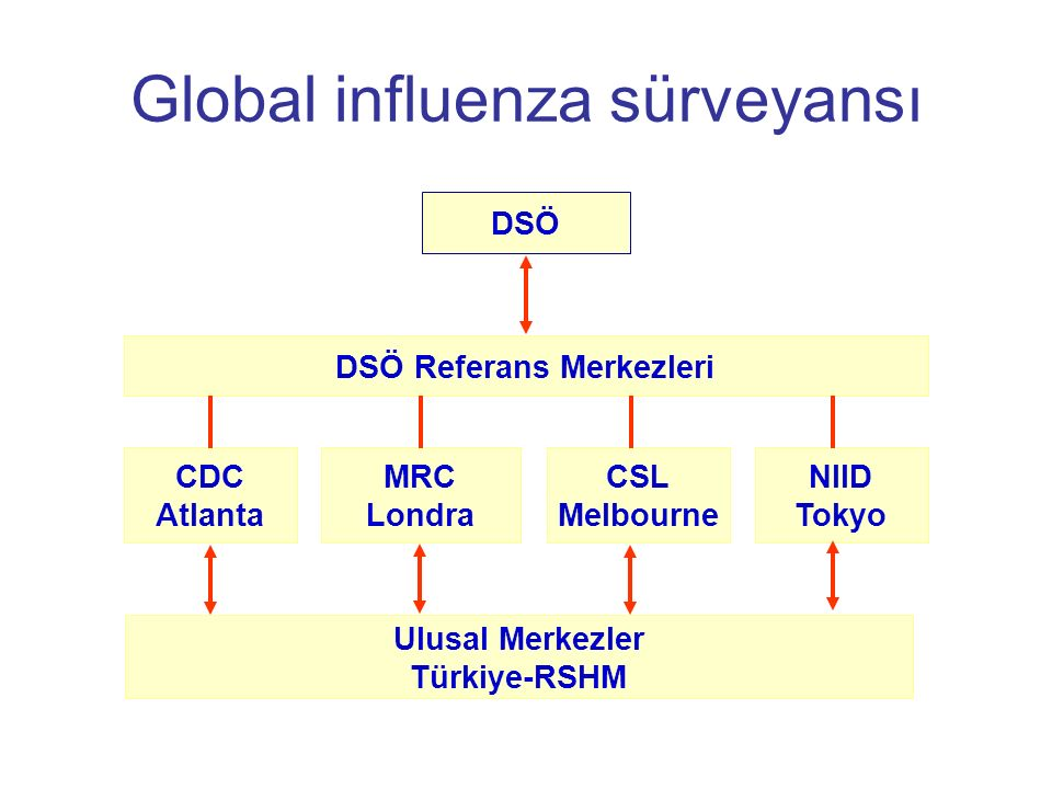 Global influenza sürveyansı