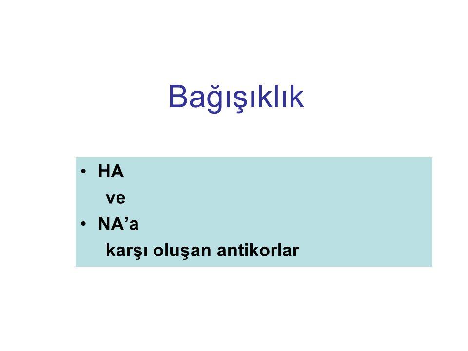 Bağışıklık HA ve NA'a karşı oluşan antikorlar Slide 6 Lecture Notes