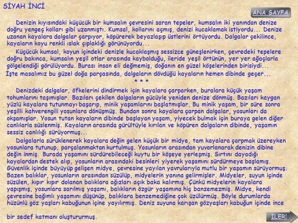SİYAH İNCİ ANA SAYFA.
