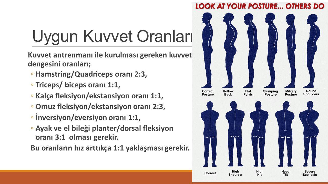 Uygun Kuvvet Oranları Kuvvet antrenmanı ile kurulması gereken kuvvet dengesini oranları; Hamstring/Quadriceps oranı 2:3,