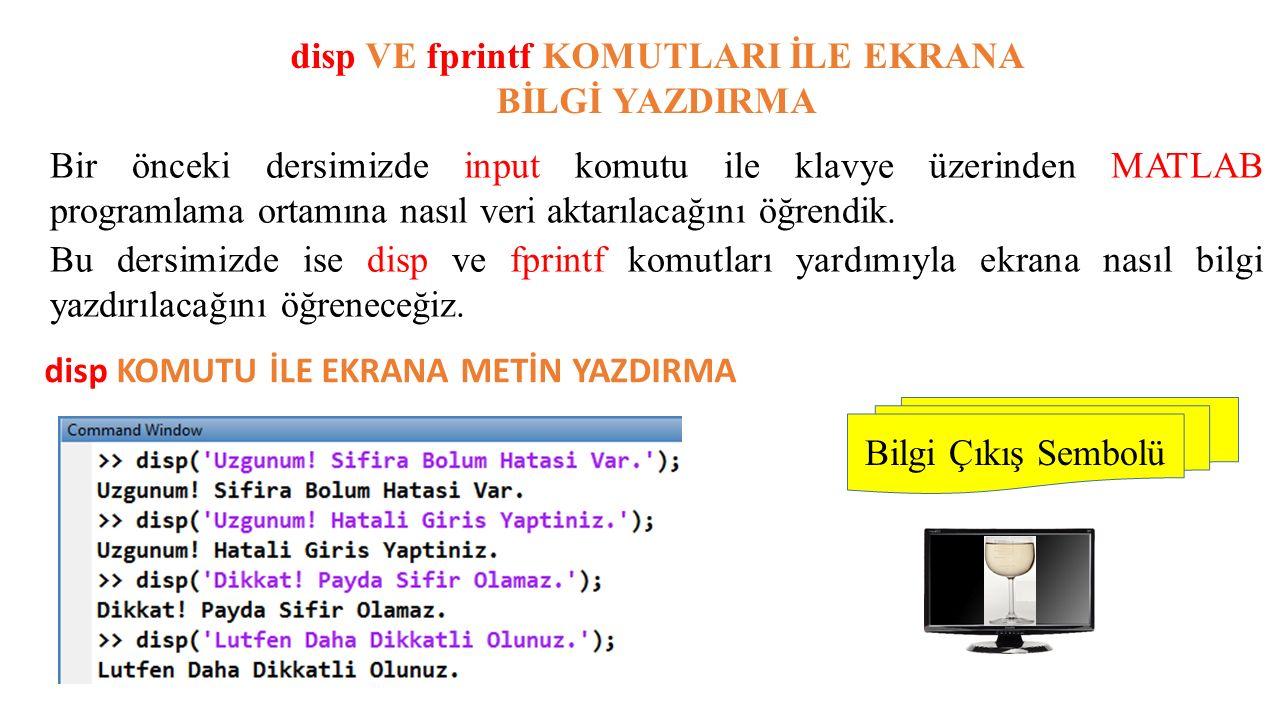 disp VE fprintf KOMUTLARI İLE EKRANA BİLGİ YAZDIRMA