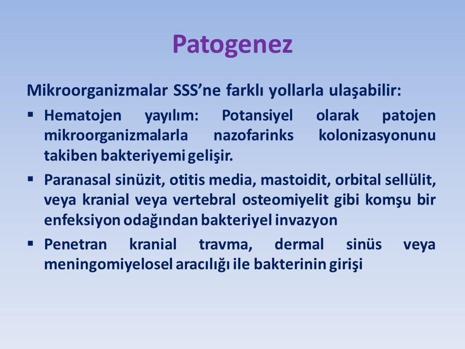 Patogenez Mikroorganizmalar SSS'ne farklı yollarla ulaşabilir: