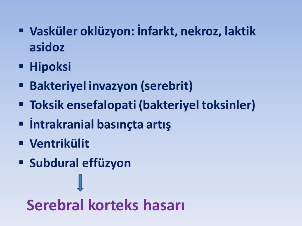 Serebral korteks hasarı
