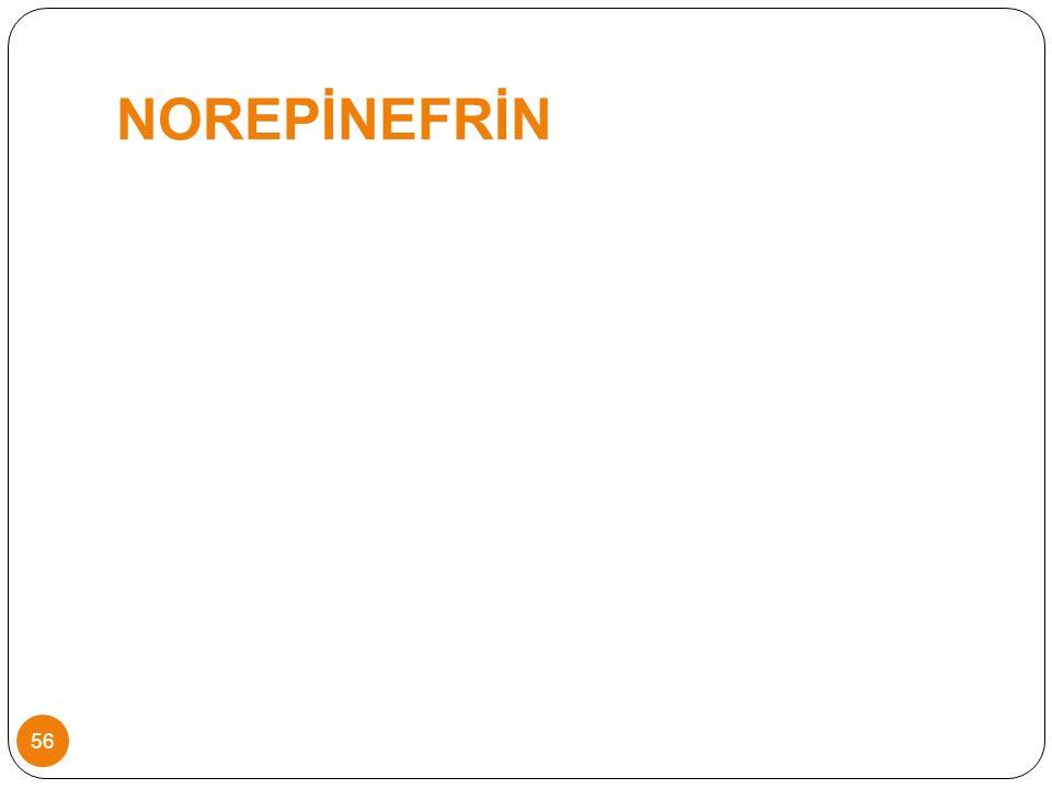 NOREPİNEFRİN