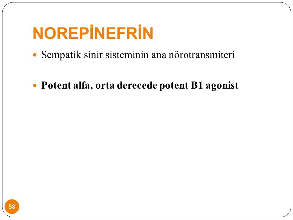 NOREPİNEFRİN Sempatik sinir sisteminin ana nörotransmiteri