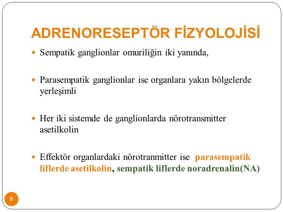 ADRENORESEPTÖR FİZYOLOJİSİ