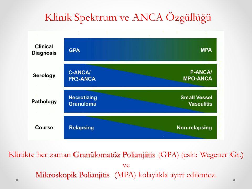 Klinik Spektrum ve ANCA Özgüllüğü