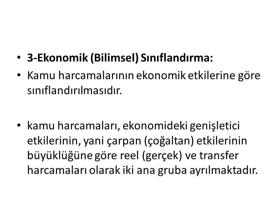 3-Ekonomik (Bilimsel) Sınıflandırma: