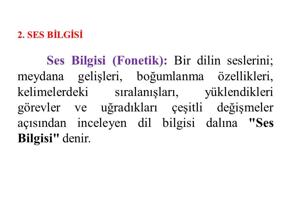 2. SES BİLGİSİ