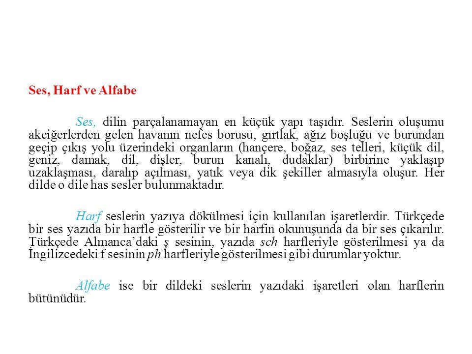 Ses, Harf ve Alfabe