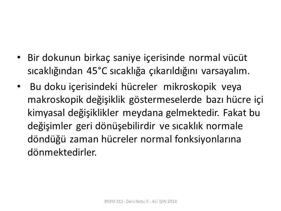 BMM 311- Ders Notu 5 - ALİ IŞIN 2014