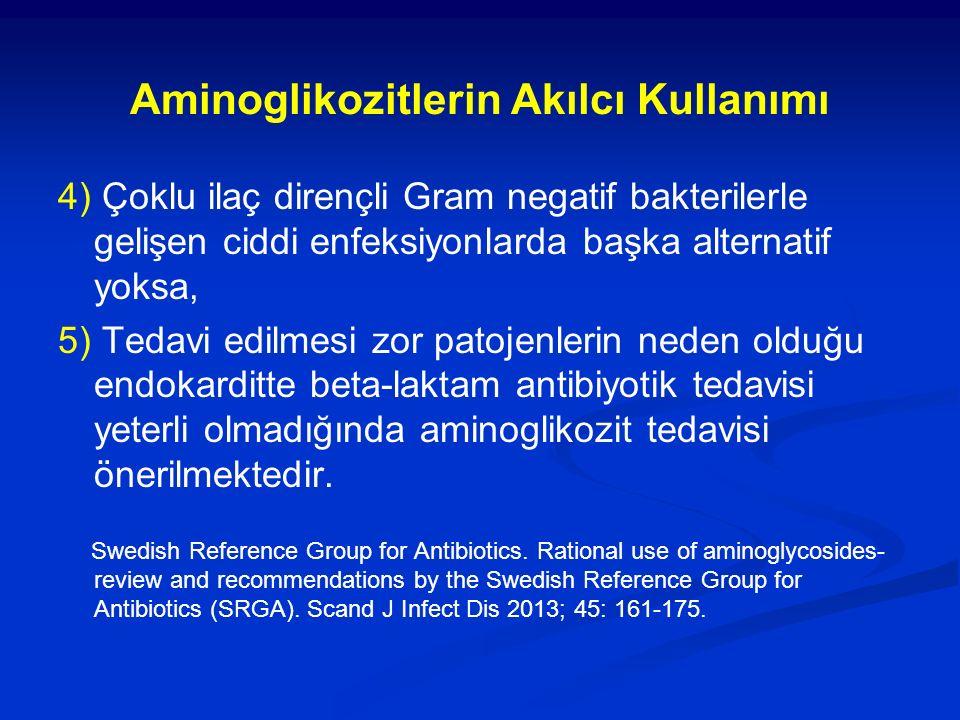 Aminoglikozitlerin Akılcı Kullanımı