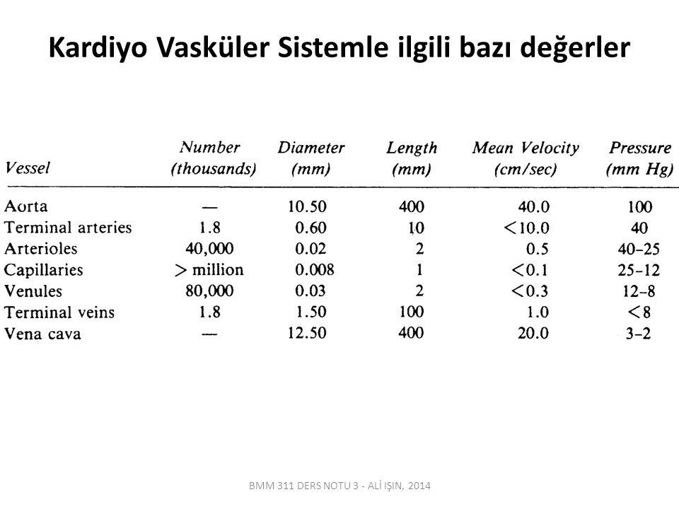 Kardiyo Vasküler Sistemle ilgili bazı değerler